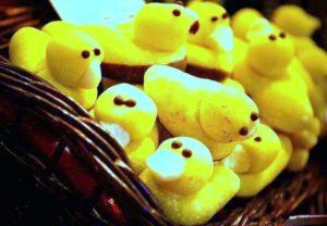 A Mazsola sárga kacsái