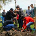 Irodalom, egészségmegőrzés, jótékonykodás és városszépítés: Önkéntesek Hete Kazincbarcikán