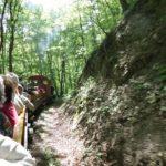 A hétvégén már indulnak a tavaszváró erdei vasútjáratok a Szalajka-völgybe