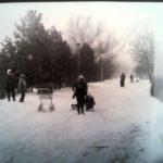 Keresztmetszet egy városról – információs jelentések: 1985. január hó