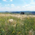 A kazincbarcikai természetjárás története* - A turizmus fejlesztésének lehetőségei