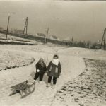 Keresztmetszet egy városról ‒ információs jelentések: 1986. február hó